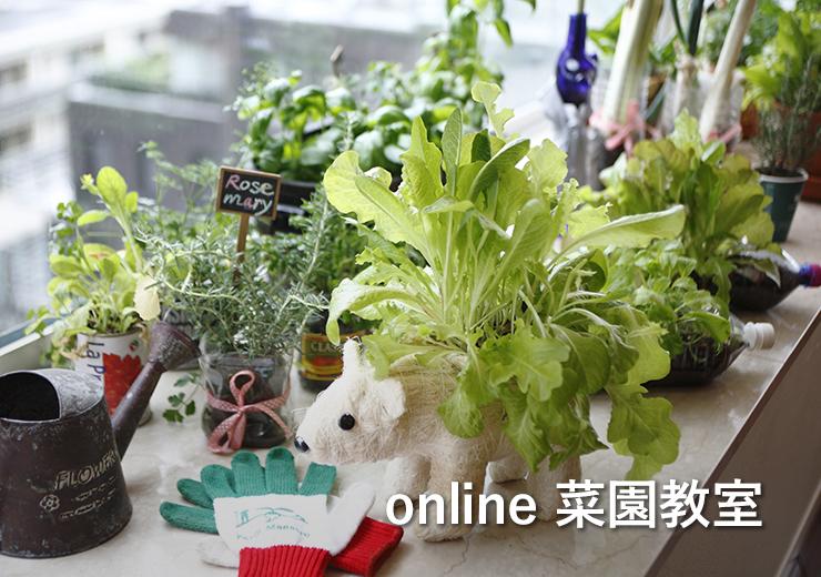 online 菜園教室